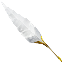 writing, learn, quill, feather, antique, school, write, teach, old, edit, plume, teaching, education icon