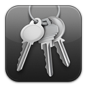 keychain, access icon