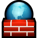 firewall, shield, world, network, safety, globe icon
