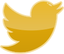 bird, social, twitter, media icon