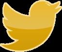bird, social, twitter, media icon