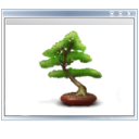plant, view, tree icon