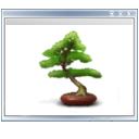 plant, view, tree icon