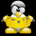 sweden,penguin,animal icon