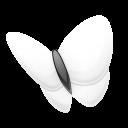 msn, explorer icon