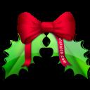 christmas, leaf icon