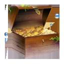 gold,treasure icon