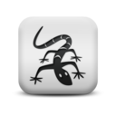 animal,lizard icon
