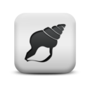 animal,seashell icon