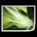 Files Image icon