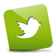 Green, , Twitter icon