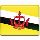 Brunei Flag icon