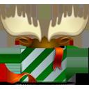 present,christmas,gift icon