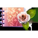 dcd, love, carnet, flowers, dc, dccd, rose, d, flower, cd, lovely, catalog icon