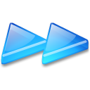 Action arrow blue double right icon