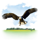 Animals Eagle icon