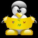 togo,penguin,animal icon