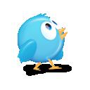 bird, 6, twitter icon