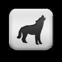 animal,wolf icon