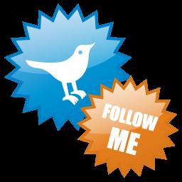 twitter, social network, social, sn icon