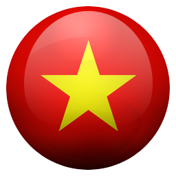 vn icon