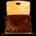 Zaisu chair icon