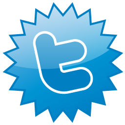twitter, sn, social network, social icon