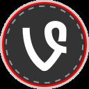 social, vine, online, media icon