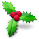 christmas,holly icon