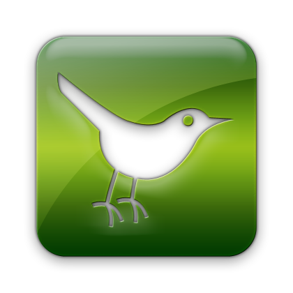 twitter, social network, social, sn, square, bird, animal icon