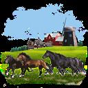 Animals, Horses icon