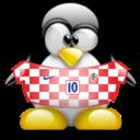 croatia,penguin,animal icon