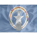 Regular Northern Marianas icon
