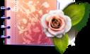 lovely,catalog,carnet icon