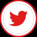 social, media, logo, brand, twitter icon