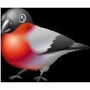 twitter, bird, bullfinch, animal icon