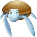 turtle,animal icon