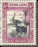 Sierra Leone Elephant icon