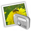 folder photos alt icon