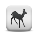animal,deer icon