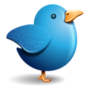 Bird, Blue, Twitter icon