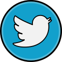 social, twitter, media icon