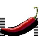 jalapeno, pepper icon