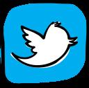 media, web, social, network, social media, communication, twitter icon