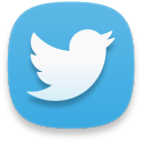 web twitter 2 icon