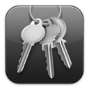 keychain,access icon