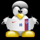 usa,penguin,animal icon