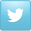 twitter, new, bird, square icon