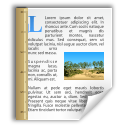 office, template, document icon