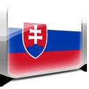 Flag, Slovakia icon